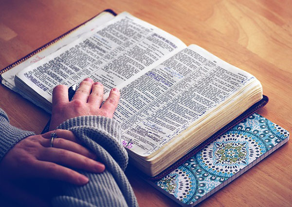 SE 31 | Born To Fly